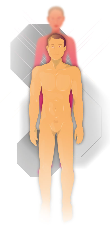 Körperregionen Mann